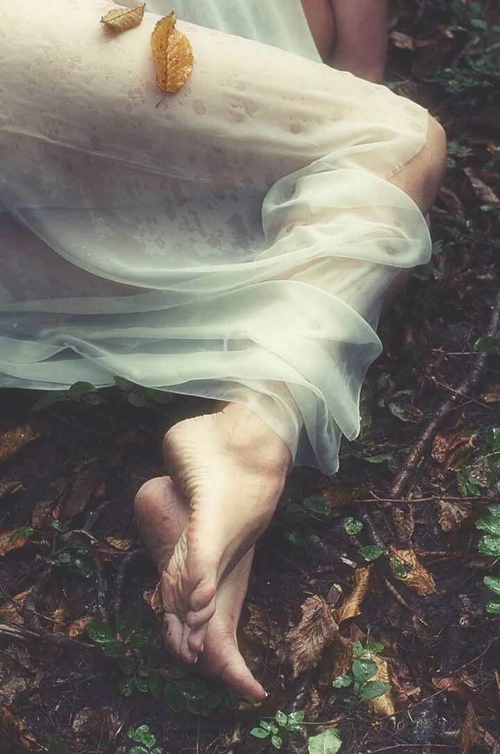 COLABORADORAS    FINA & ALEJANDRO  Para reconocer en la sed mi emblema para significar el único sueño para no sustentarme nunca de nuevo, en el amor he sido toda ofrenda un puro errar de loba en el bosque en la noche de los cuerpos para decir la palabra inocente   Fina Fernández