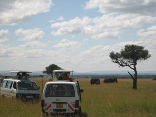 Trip Tips and What To Pack for Your Kenya Safari Vacation