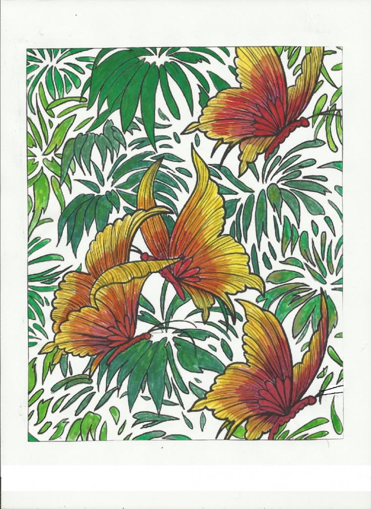 Sue Carlson 18 Division From Beautiful Butterfly Designs Coloring Book