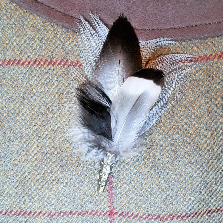 Duck feather pin, buttonhole, hatpin/ brooch http://countrycraftybits.co.uk/