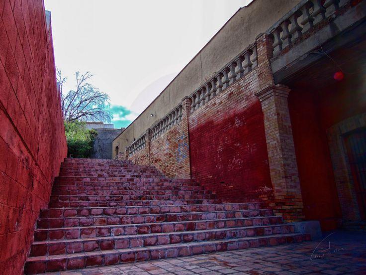 Saltillo Coah Barrio Aguila De Oro Saltillo Coahuila