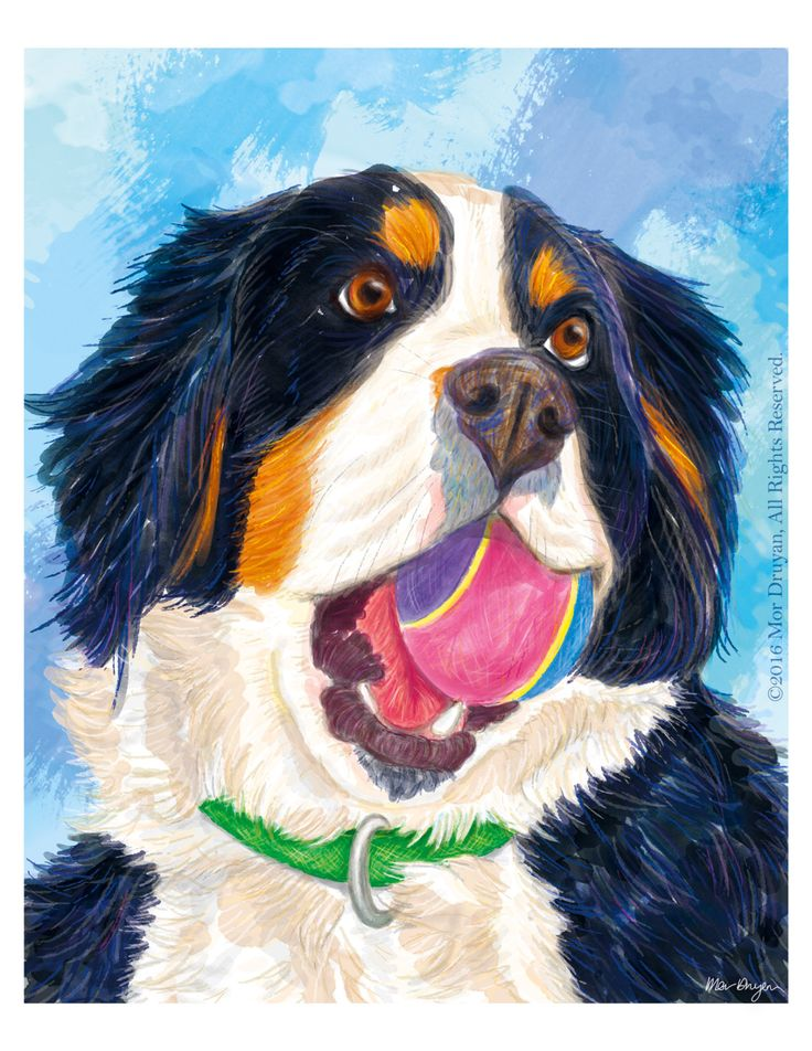 Excited to share one of my pet paintings available on my #etsy shop: Bernese Mountain Dog Colorful Art Print Of Original Painting-8x10-Pet Print-Nursery Decor-Pet Portrait-Dog Gifts-Wall Decor-Dog Print #art #print #giclee #rainbow #dogdrawing #artprint #petportrait #walldecor http://etsy.me/2FjBk36