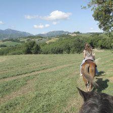 Horse riding around Le Marche hills - Active & cultural holidays Urbino Le Marche Italy – Locanda della Valle Nuova  www.vallenuova.it
