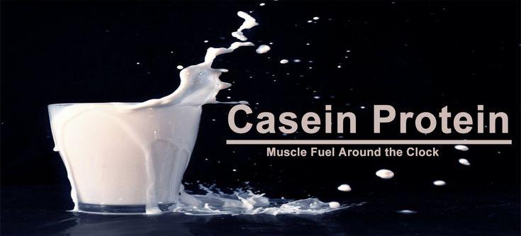 Casein Protein - All You Need To Know About Casein Protein Powder