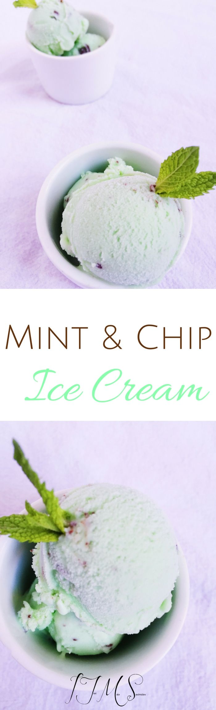 Those who know me, know that my favorite ice cream of all time is Mint n' Chip ice cream... that's my first pick without fail!