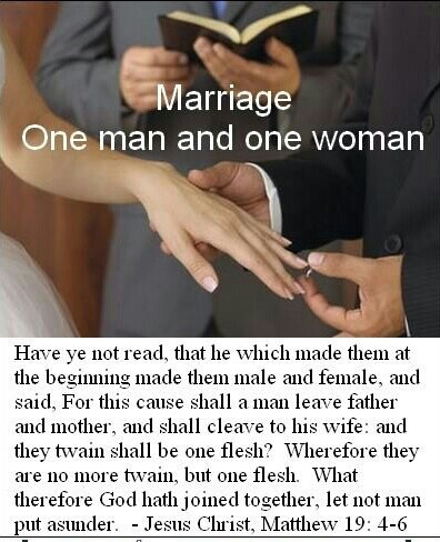 Image result for 'For this reason a man shall leave his father and mother and be joined to his wife