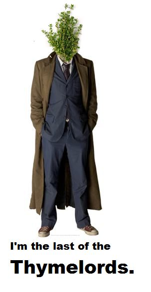 Last of the Thymelords.: Doctorwho, Cardboard Cutout, 10Th Doctor, Doctor Who, Doctors, Dr. Who, David Tennant, Dr Who
