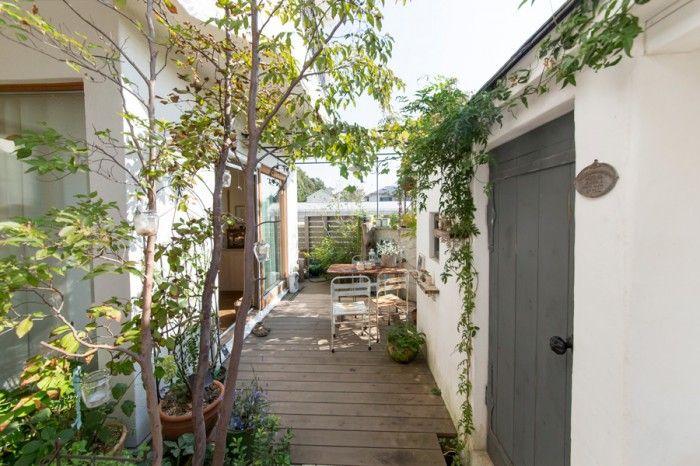 ウッドデッキの庭には、ヒメシャラ、ヤマボウシなどの木が美しく茂る。ガーデンシェットの壁面には、経年すると固くなっていくフランスの素材を使用。
