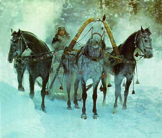 Troika , the famous Russian horse drawn vehicle means that three horses are put together in a team in a horizontal row in front of a sleigh. dr Zhivago!