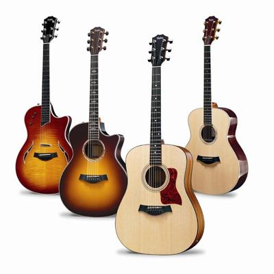 I highly recommend Taylor Guitars. I've got two: an 710-CE, and a 12 string 356-CE.