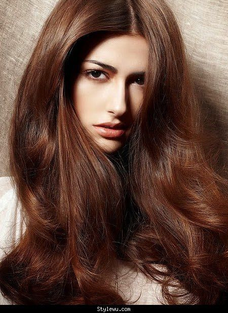 Image Result For Cinnamon Hair Color Copper Brown Chestnut Light