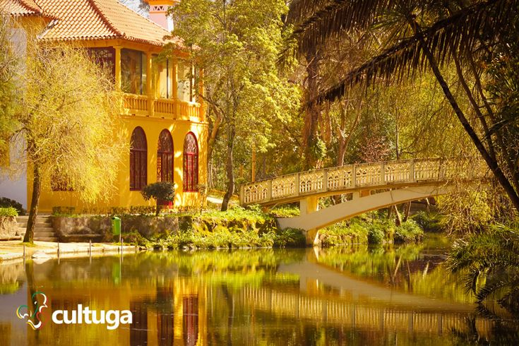 Parque da Cidade, um dos cantinhos românticos de Aveiro. Portugal | Roteiro de viagem