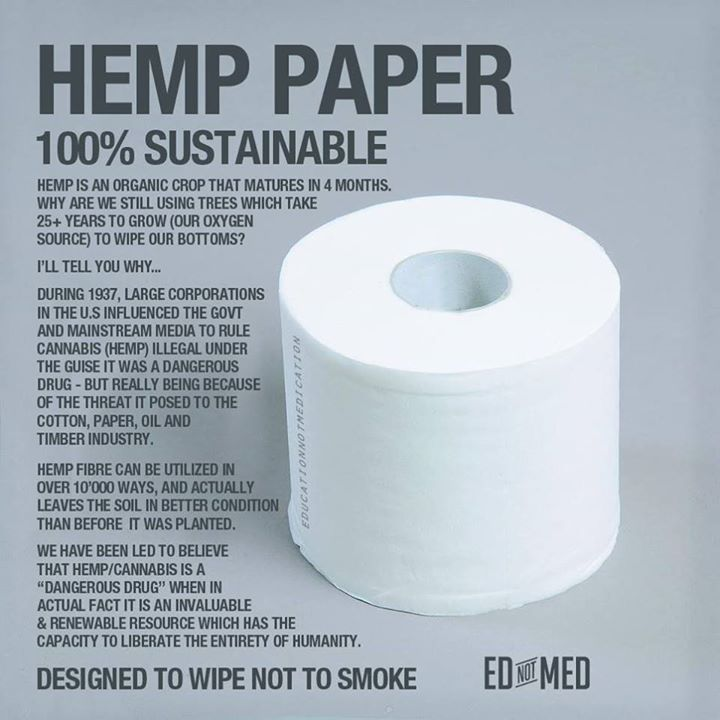 17 Best Images About Hemp Paper On Pinterest Cover