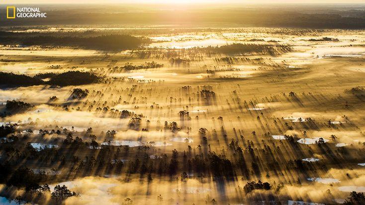 PHOTOS. Concours National Geographic: 24 des incroyables images en lice