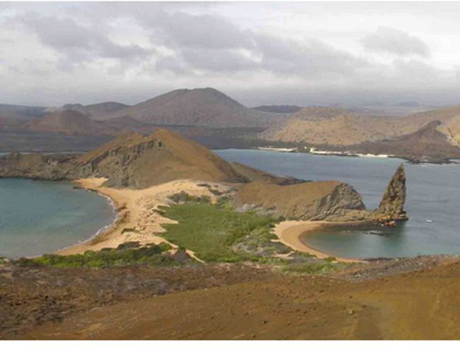 Check out this list: Small Ship Cruises: The Galapagos