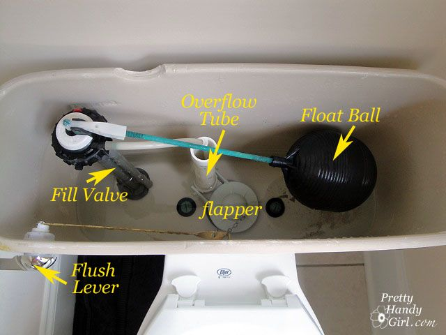 Don't laugh...nobody wants to deal with a leaking toilet, but no need to call the plumber!    Prettyhandygirl.com is a great website that has outstanding step by step photo directions on how to do simple home repairs YOURSELF :) Why waste 200 bucks on a service call when you can fix it yourself and buy shoes instead!!! :)