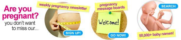 Week by Week Pregnancy Calendar   3D Pregnancy