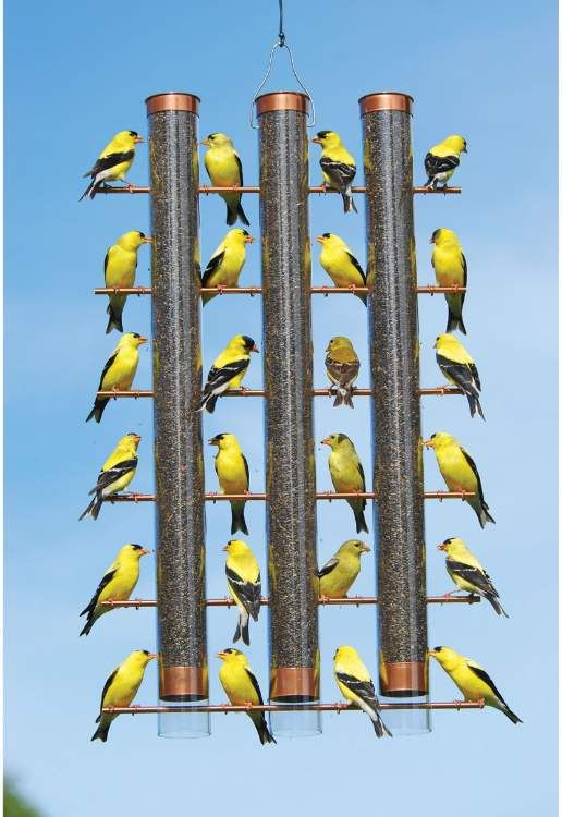 Bombay Bongo Unique Gifts - Copper Finches Favorite 3 Tube Bird Feeder, $47.97 (http://www.bombaybongo.com/copper-finches-favorite-3-tube-bird-feeder/)