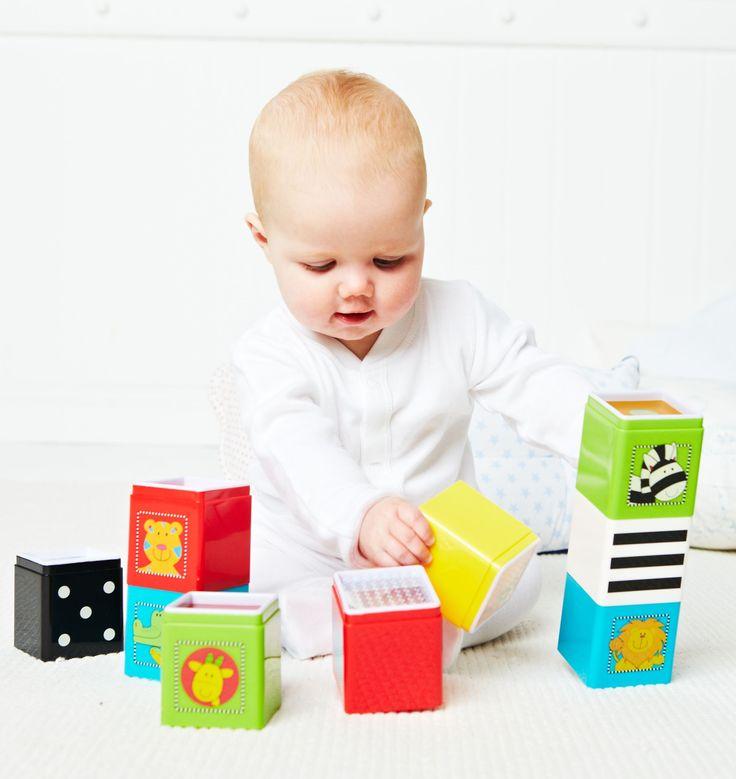 Jungle Wonder Cubes