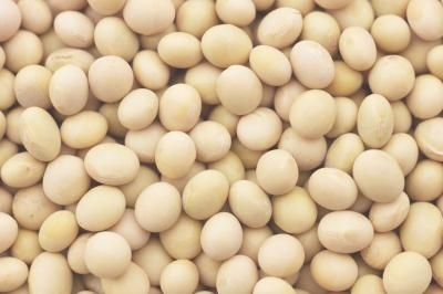 How to Eliminate Gas When Cooking White Beans
