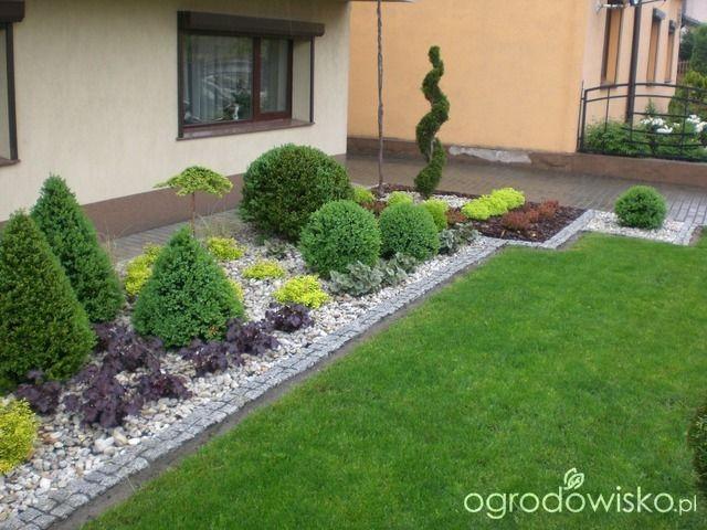 Ogród mały, ale pojemny;) - strona 26 - Forum ogrodnicze - Ogrodowisko