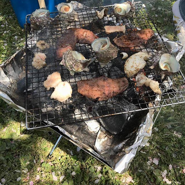 ファイアグリルの初おろしBBQ🍖写真では超マズそうな肉やけど、精肉店の肉で味は旨い、サザエの壷焼きもイイ感じ🔥唯一撮った写真🤳 #バーベキュー#bbq#焼肉#肉#beef#シマチョウ#サザエ#サザエのつぼ焼き#ファイアグリル#firegrill#ユニフレーム#uniflame#焚き火台#デイキャンプ#daycamp#アウトドア#outdoor#花見#桜