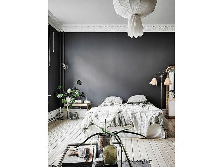 01_parete-grigio-scuro-fondale-camera-da-letto-pianta-da-interno-