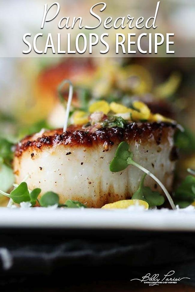 pan seared scallops recipe with white wine and herb butter sauce recipe scallops seared scallop recipes pan seared scallops pinterest