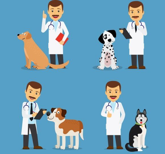 Veterinarian Doctor With Dogs Veterinarian Human Logo Inspiration Dogs