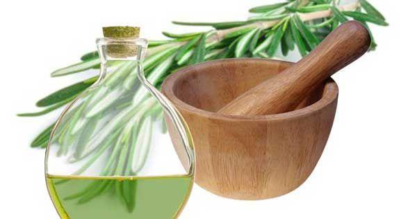 Além de possuir uma série de propriedades terapêuticas, o óleo essencial de alecrim é excelente também para cuidar da pele e dos cabelos. Saiba mais!