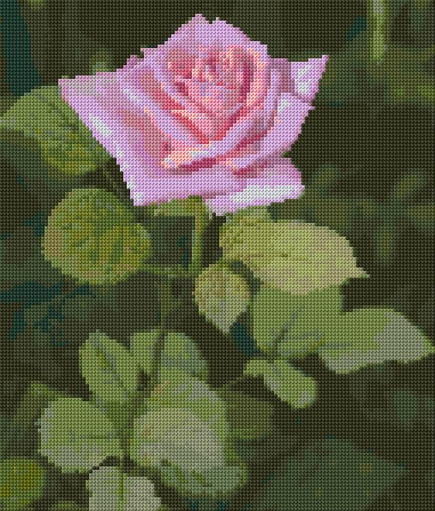 http://www.cross-stitch-pattern.net/Pink-Rose-17-339-Free-Design.aspx