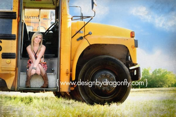 Dragonfly Design Photography by Angelique
