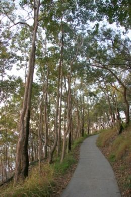 Walking Tracks in Noosa NAtional Park. Govt Website