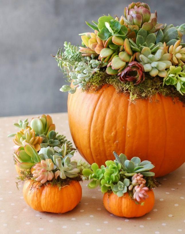 DIY pour un mariage en automne                                                                                                                                                     Plus
