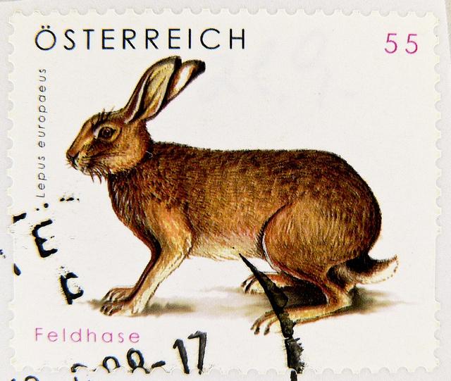 beautiful stamp Austria 55c postzegel timbres Autriche Österreich Briefmarke Feldhase rabbit bunny lepus lièvre liebre lepre € 0.55 postzegel Oostenrijk طوابع النمسا frimærker østrig markica Austrija टिकटों ऑस्ट्रिया francobollo Austria スタンプ オーストリア b | Flickr - Photo Sharing!