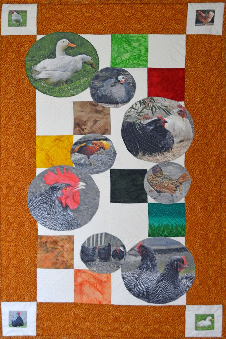 Check out this quilt for all those chook lovers.
