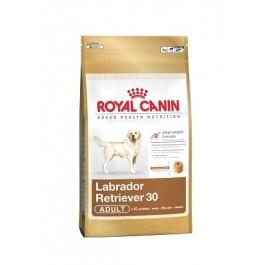 Royal Canin Labrador Retriever Adulto 30