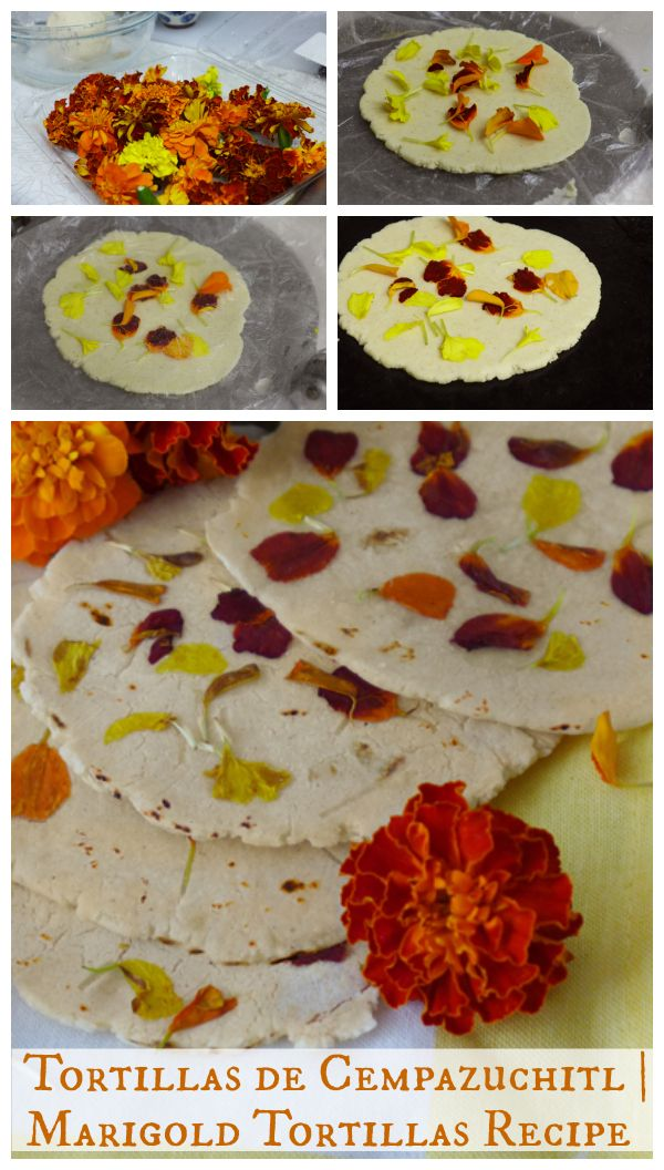 Tortillas de Cempazuchitl | Marigold Flower-Pressed Tortillas {Recipe}