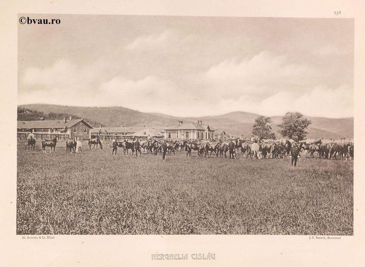 """Herghelia Cislău, 1902, Romania. Ilustrație din colecțiile Bibliotecii Județene """"V.A. Urechia"""" Galați. http://stone.bvau.ro:8282/greenstone/cgi-bin/library.cgi?e=d-01000-00---off-0fotograf--00-1----0-10-0---0---0direct-10---4-------0-1l--11-en-50---20-about---00-3-1-00-0-0-11-1-0utfZz-8-00&a=d&c=fotograf&cl=CL1.43&d=J240_697980"""