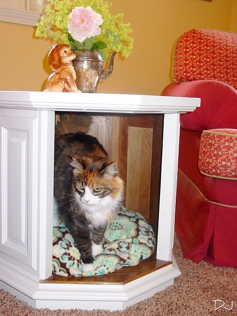 end table pet bed  I have a table like this that doors off of.  This might be the thing to try.