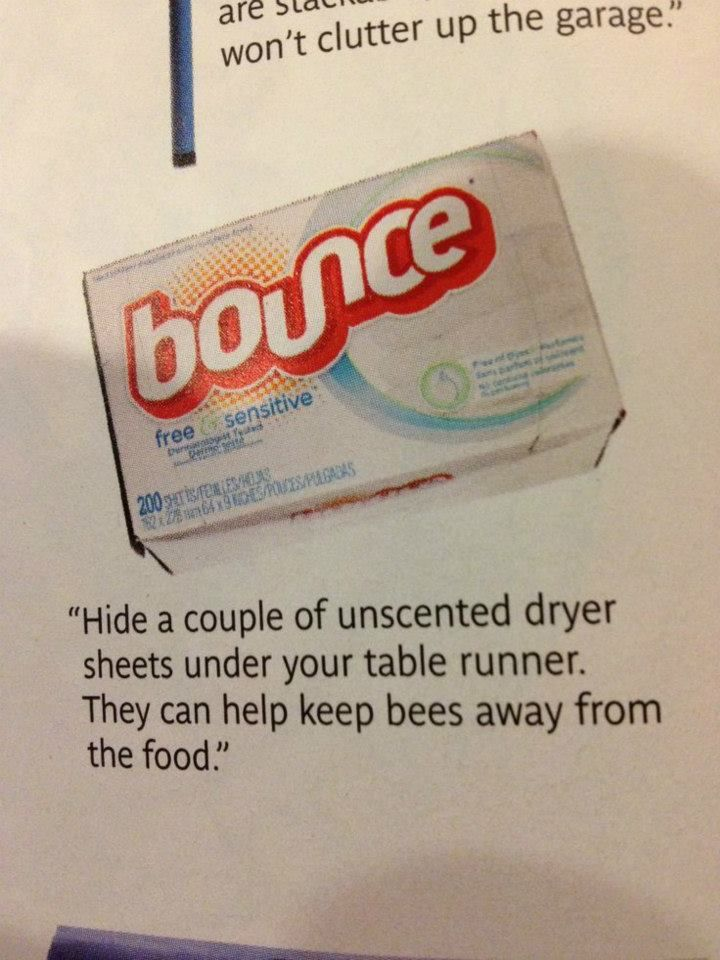Put Bounce in all your containers when you go camping or any other reasons.