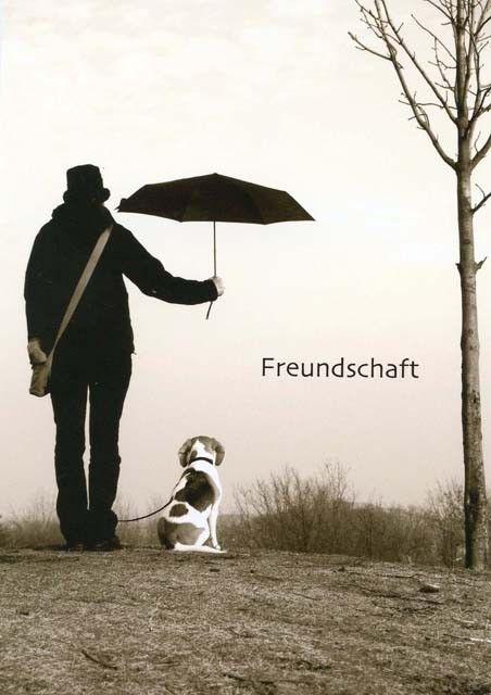 Postkarte mit lustigen Sprüchen - Freundschaft