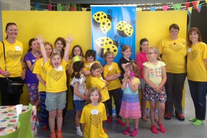 Yellow Ladybugs in Canberra