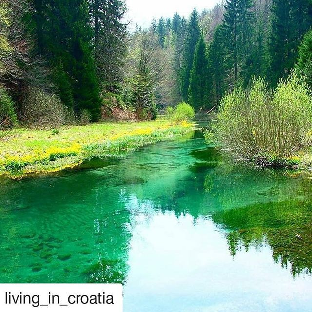 #Repost @living_in_croatia (@get_repost)  Repost @huckfinncroatia with @instatoolsapp  There's no time to be bored in a world as beautiful as this.  #adventuretime #adventuretravel #adventure #travel #travelphotography #nature #naturelovers #landscape #hiking #biking #cycling #croatiafulloflife #croatia #instatravel #instagood #passportready #travelblog #travelgram #wanderlust #natgeo #natgeotravel #riverside #canoeing
