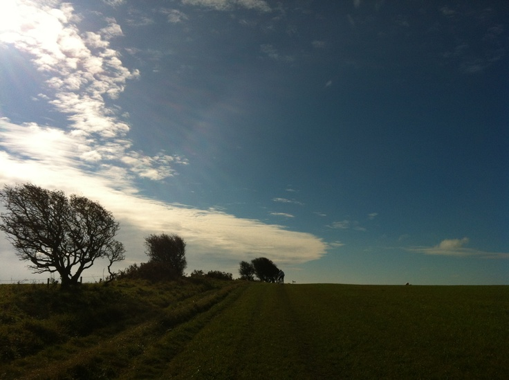 Cycling up to Abbotsbury Hill