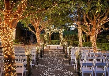 Rows of lit trees line the aisle for a night time wedding