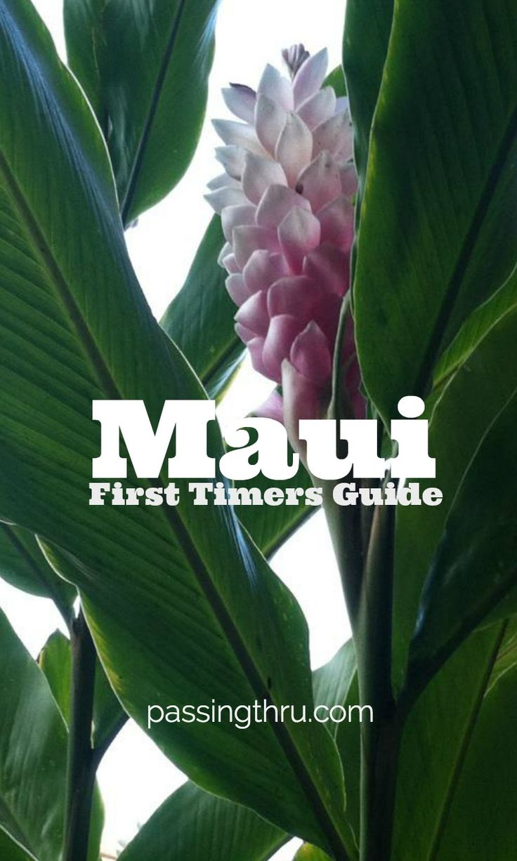 For many Maui first timers, it's the very definition of island paradise. Make the most of your visit to Hawaii's Valley Isle with our guide!