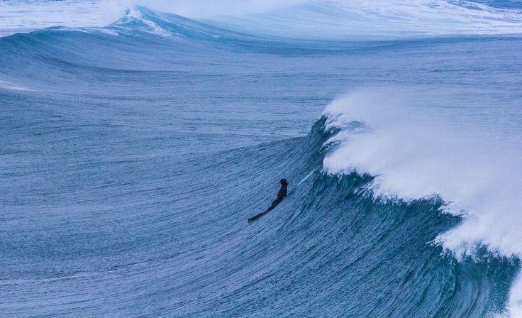 Arctic Surfer - null
