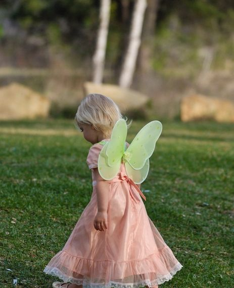 10 Creative Ways To Make Your Flower Girl Stand Out:  #5. Fairy Wings