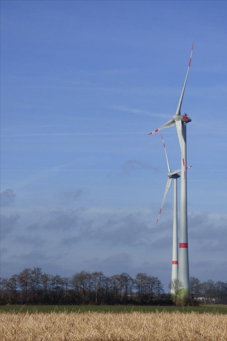 Etappe 1 - Zicht op windmolens vanaf de Brookdiek